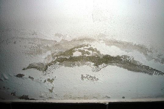 Umidità risalita come risolvere il problema