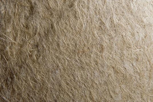 Pannello Isolante in fibra di Canapa